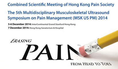 Pain Scientific Meeting 2013